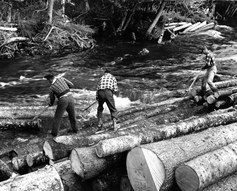 Driving logs down-river was part of logging in Maine.