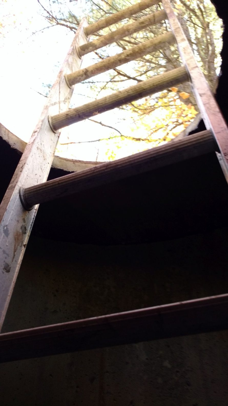 In my well, looking towards the sky.
