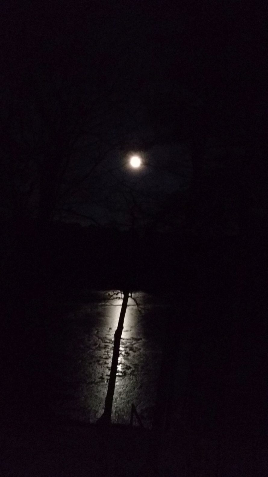Full moon over Woodward Cove-Brunswick, Maine.